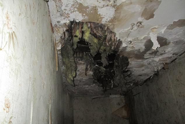 Màn lột xác kỳ diệu của ngôi nhà hoang giá chỉ 1 bảng thành tổ ấm vạn người mê - Ảnh 3.