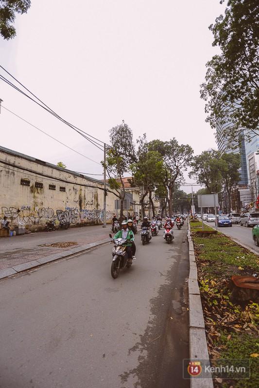 Chùm ảnh: Đường Tôn Đức Thắng trước và sau khi hàng trăm cây xanh bị đốn hạ để phát triển thành phố - Ảnh 11.