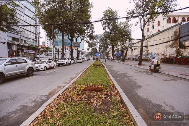 Chùm ảnh: Đường Tôn Đức Thắng trước và sau khi hàng trăm cây xanh bị đốn hạ để phát triển thành phố - Ảnh 19.