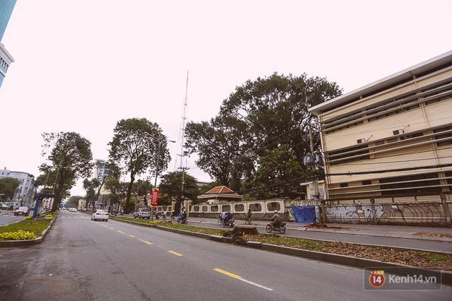 Chùm ảnh: Đường Tôn Đức Thắng trước và sau khi hàng trăm cây xanh bị đốn hạ để phát triển thành phố - Ảnh 21.