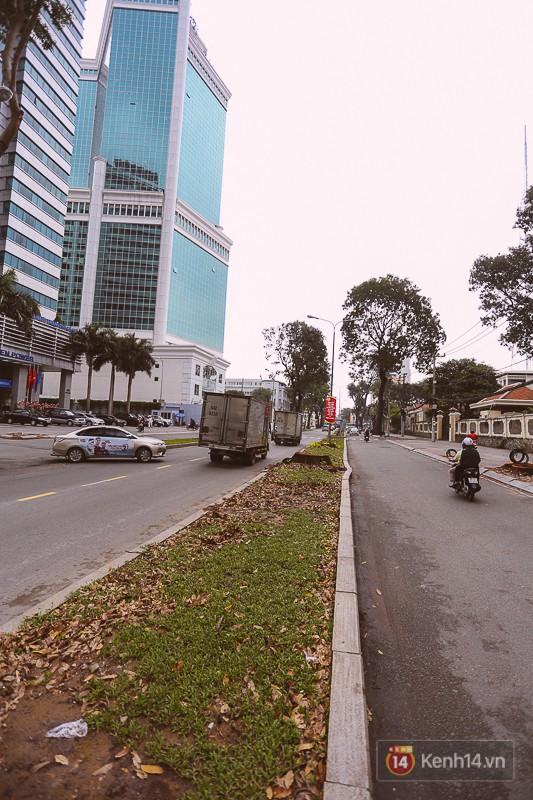 Chùm ảnh: Đường Tôn Đức Thắng trước và sau khi hàng trăm cây xanh bị đốn hạ để phát triển thành phố - Ảnh 5.