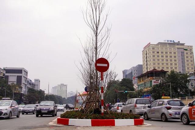 Ngắm đường 10 làn xe đẹp nhất Việt Nam tại Hà Nội - Ảnh 13.