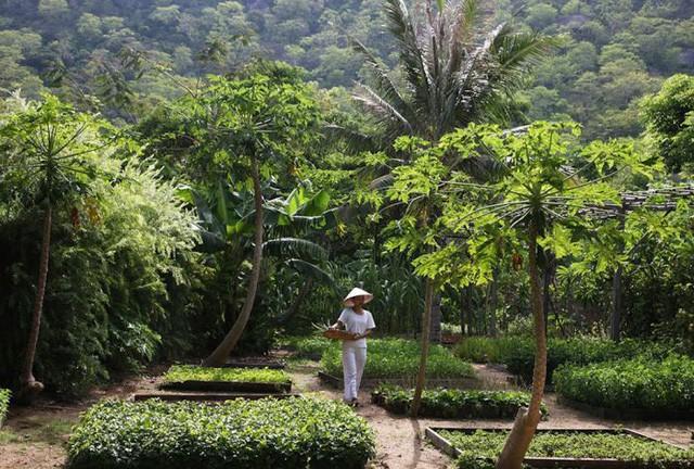 Bên trong khu nghỉ dưỡng Việt được báo Mỹ bình chọn là nơi nhất định phải đến - Ảnh 9.