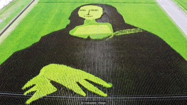 Làng thần kỳ Nhật Bản: Từ nghèo nhất đến nổi tiếng khắp cả nước, doanh số bán gạo tăng 400% nhờ biến ruộng lúa thành tranh - Ảnh 3.