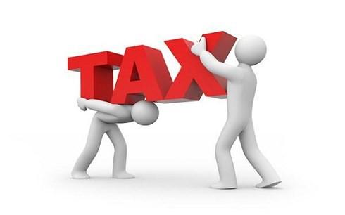 TS Bùi Trinh: Tăng thuế sẽ khiến người nghèo càng nghèo hơn - Ảnh 1.