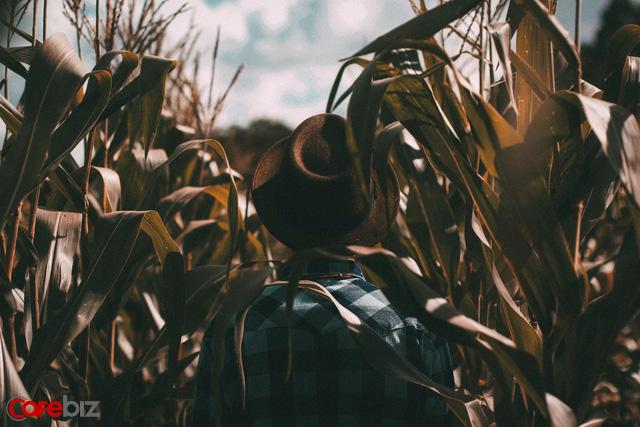 Mang cả gia tài lên phố, người nông dân được gì: Bài học kinh điển khi kinh doanh giúp bạn đặt ra mục tiêu đúng đắn cho bản thân - Ảnh 1.