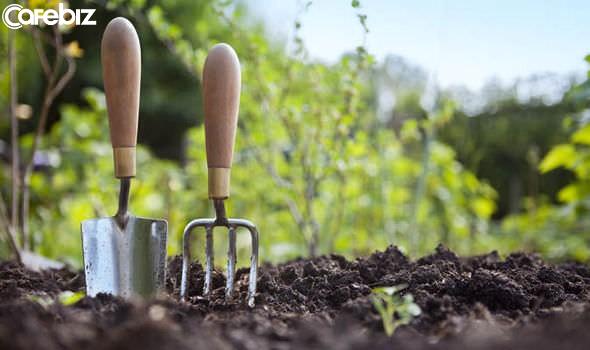 Đời có 3 loại: Người trồng cây, người chủ vườn và người thiết kế. Bạn chọn là ai sẽ quyết định số phận cuộc đời mình - Ảnh 1.