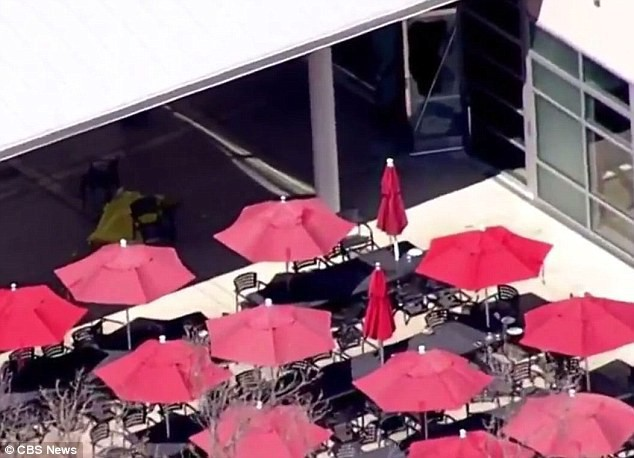 Xả súng kinh hoàng tại trụ sở YouTube, nữ nghi phạm tự sát - Ảnh 2.