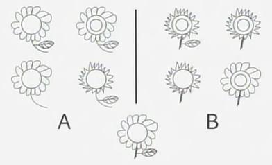 Bạn tư duy theo cách nào: 'A là A' hay 'Đôi khi A là A và đôi khi A không phải là A'? - Ảnh 3.