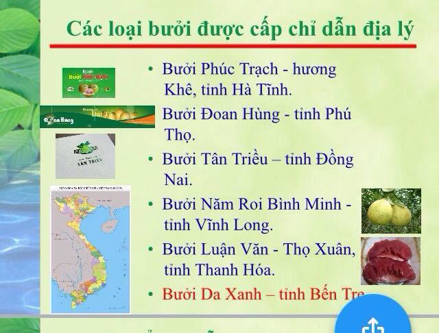 Có bùa chú này, người trồng cam Cao Phong, bưởi da xanh Bến Tre, hộ kinh doanh chả mực Hạ Long... sẽ thu lợi cao hơn từ đặc sản và dẹp nạn hàng giả mạo danh - Ảnh 1.