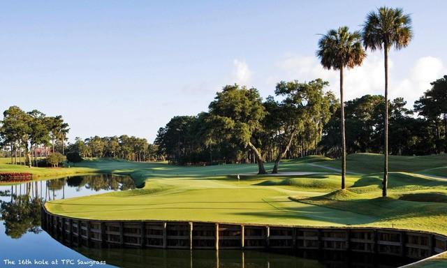 Vì sao sân golf phong cách bờ kè lại thu hút golf thủ đến vậy?  - Ảnh 1.
