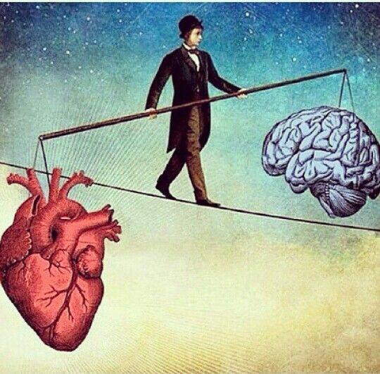 Chọn con tim hay là nghe lý trí: Những quyết định lý trí nhất cũng luôn bị chi phối bởi cảm xúc - Ảnh 2.