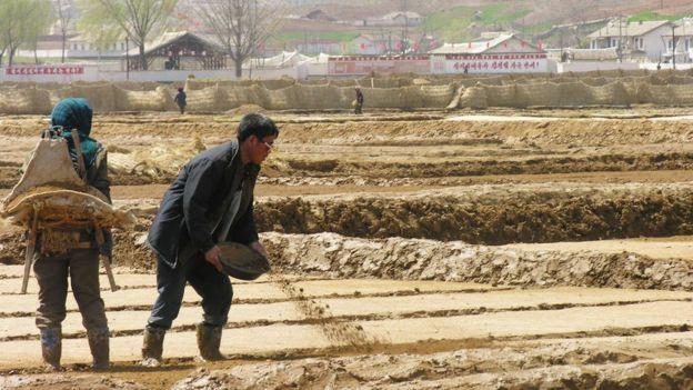 Cuộc sống của những giàu có ở đất nước Triều Tiên: Xem phim Hàn Quốc, đi chơi thủy cung, đến rạp chiếu phim 3D, khác hẳn những gì xảy ra ở tầng lớp dưới - Ảnh 3.