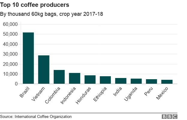 Câu chuyện cà phê: Quốc gia nào trồng, tiêu thụ và trả tiền nhiều nhất cho loại đồ uống này? - Ảnh 1.
