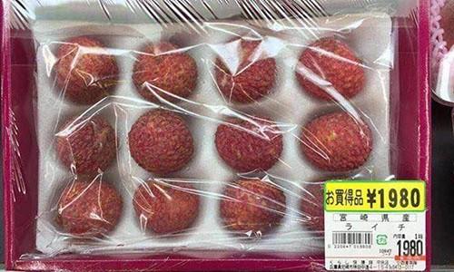 Hạt mít, lá tía tô, lá chanh... rẻ như cho ở chợ nhưng lại mang về tiền tỷ khi xuất khẩu - Ảnh 7.