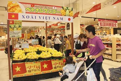 Hạt mít, lá tía tô, lá chanh... rẻ như cho ở chợ nhưng lại mang về tiền tỷ khi xuất khẩu - Ảnh 6.