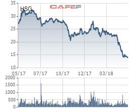 Khó từ ngoài vào trong, cổ phiếu rớt sâu về mệnh giá, Hoa Sen Group (HSG) sẽ là chiến lược dài hơi hay… canh bạc của Tundra? - Ảnh 1.