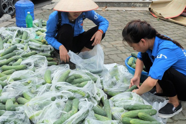 Hàng trăm kg dưa chuột đổ mồ hôi trong nắng nóng Hà Nội chờ được giải cứu - Ảnh 2.