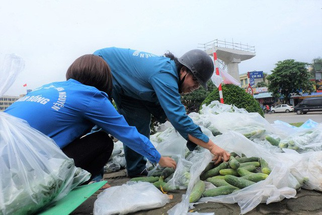 Hàng trăm kg dưa chuột đổ mồ hôi trong nắng nóng Hà Nội chờ được giải cứu - Ảnh 3.