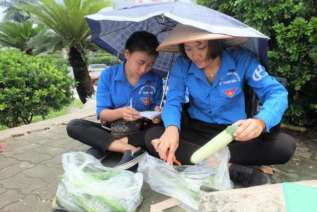 Hàng trăm kg dưa chuột đổ mồ hôi trong nắng nóng Hà Nội chờ được giải cứu - Ảnh 7.