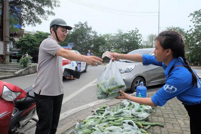 Hàng trăm kg dưa chuột đổ mồ hôi trong nắng nóng Hà Nội chờ được giải cứu - Ảnh 9.