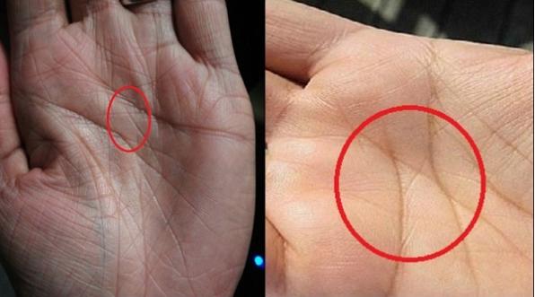 Nhìn vào lòng bàn tay mình và xem đi, nếu sở hữu đường chỉ tay như thế này, bạn đúng là của hiếm của thế giới, tài giỏi thông minh hơn người - Ảnh 2.