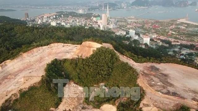 Tận thấy những ngọn đồi trọc đầu vì dự án ở Hạ Long - Ảnh 9.