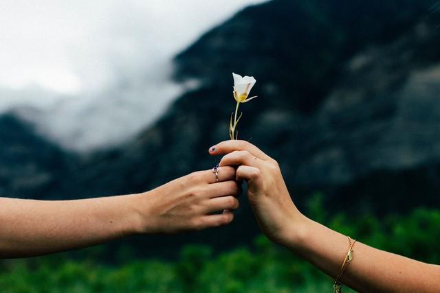 Khi có những dấu hiệu của trầm cảm, đây là cách giúp bạn tha thứ cho bản thân và tìm lại cuộc sống hạnh phúc, thảnh thơi  - Ảnh 1.