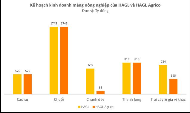 Bầu Đức: HAGL Agrico sẽ vĩ đại. Tôi đang làm hết sức có thể, cổ đông hãy chờ đợi - Ảnh 2.