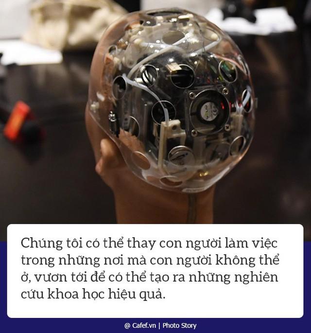 Robot Sophia nói gì về cách mạng công nghiệp 4.0 tại Việt Nam? - Ảnh 2.