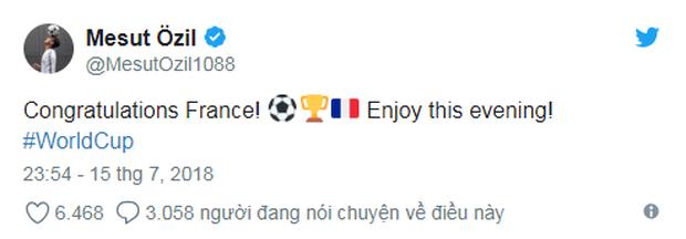 Vô địch World Cup 2018, đội tuyển Pháp được cả thế giới chúc mừng - Ảnh 5.