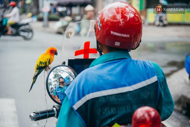 đầu tư giá trị - photo 1 15322434738401551051918 - Ông cụ nhặt rác và chú vẹt ở Sài Gòn trên chiếc xe cứu thương đáng yêu được chế tạo từ phế liệu