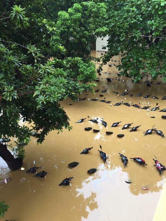 Những hình ảnh hiếm thấy trên đường phố sau trận ngập lụt kinh hoàng tại miền Bắc  - Ảnh 1.