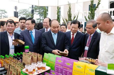 Thủ tướng 'đặt hàng' ngành nông nghiệp vào tốp 15 thế giới - Ảnh 2.