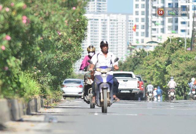 Hà Nội: Mặt đường bốc hơi dưới cái nắng nóng 40 độ, công nhân công ty cây xanh phải che lá chống nắng - Ảnh 5.
