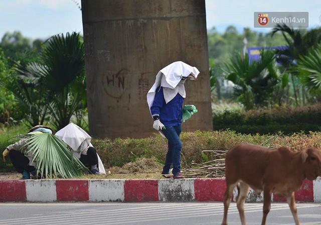Hà Nội: Mặt đường bốc hơi dưới cái nắng nóng 40 độ, công nhân công ty cây xanh phải che lá chống nắng - Ảnh 7.