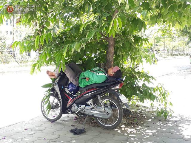 Ảnh: Những giấc ngủ trưa nhọc nhằn dưới tán cây, gầm cầu của người lao động trong đợt nắng nóng đỉnh điểm ở Thủ đô - Ảnh 7.