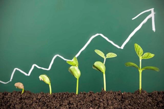 4 bài học sống còn mà bất cứ doanh nhân thành công nào cũng đều phải trải qua - Ảnh 1.
