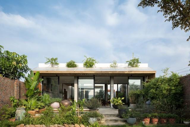 """Cận cảnh căn nhà cấp 4 """"đẹp hơn biệt thự"""" ở ngoại thành Hà Nội được báo Tây khen ngợi - Ảnh 1."""