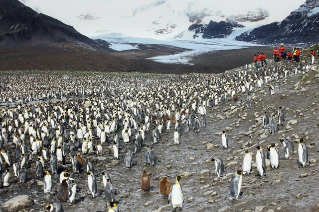 """Công việc của những người làm ở Nam Cực: vắng vẻ mà chẳng bình yên, có dự báo thời tiết """"sai"""" nhất thế giới - Ảnh 5."""