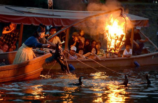 Đây là cách đánh cá độc đáo giúp người Nhật được UNESCO vinh danh - Ảnh 3.