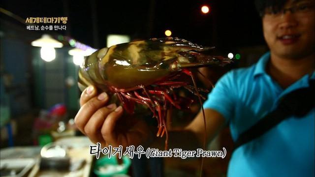 đầu tư giá trị - photo 3 15348214763152105048208 - Thiên đường hải sản Bờ Kè (Mũi Né) làm choáng ngợp người xem khi lên sóng đài Hàn Quốc