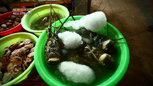đầu tư giá trị - photo 4 15348214763161059103051 - Thiên đường hải sản Bờ Kè (Mũi Né) làm choáng ngợp người xem khi lên sóng đài Hàn Quốc