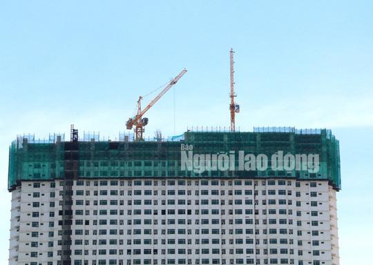 Xem Mường Thanh Khánh Hòa đang cắt ngọn - Ảnh 9.
