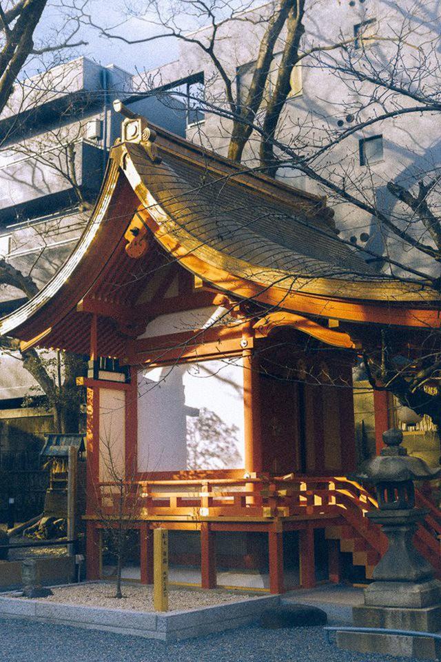 Bộ ảnh ở Kyoto này sẽ cho bạn thấy một Nhật Bản rất khác: Bình yên, dịu dàng và đẹp như những thước phim điện ảnh - Ảnh 16.