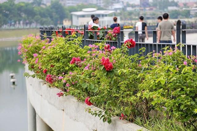 Công viên 300 tỷ chính thức hoạt động sau 2 năm đắp chiếu - Ảnh 9.
