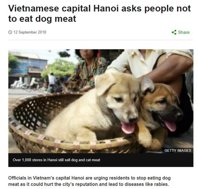 Góc nhìn thú vị của nhiều báo lớn quốc tế về vấn đề ăn thịt chó tại Việt Nam - Ảnh 3.