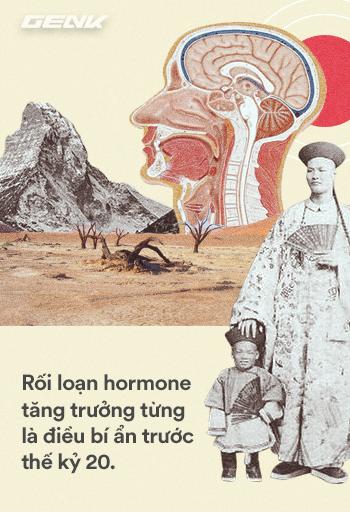 Lịch sử hơn 100 năm của hormone, những hóa chất siêu mạnh đang điều khiển cơ thể chúng ta - Ảnh 3.