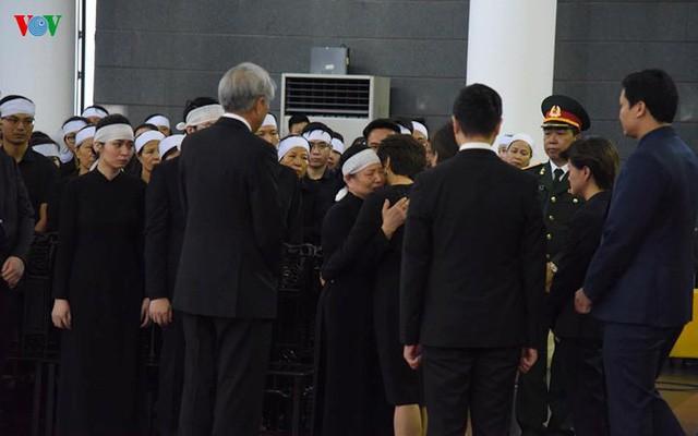 Các đoàn đại biểu quốc tế viếng Chủ tịch nước Trần Đại Quang - Ảnh 15.