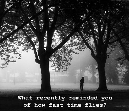 Sống một năm lặp lại 79 lần và gọi đó là cuộc đời: 18 câu hỏi đơn giản bạn cần trả lời ngay để có một năm mới khác biệt! - Ảnh 18.